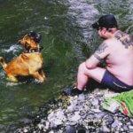 Бордосский дог - сильная и выносливая собака