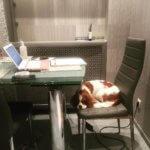 Когда устал работать
