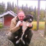 Карельская медвежья собака - фото